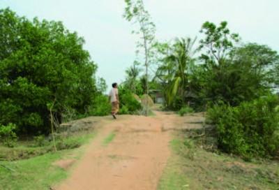 The Royal Road and the ancient bridge of Angkor
