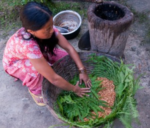 Producing fermented soybean by Limbu woman in Sikkim, India