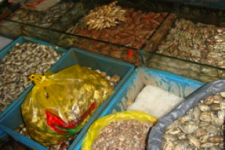 Molluscan bivalves sold in a fresh market in Shanghai.