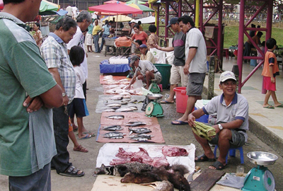 An inland market town in Borneo. Although selling wild animals is prohibited by the law, some kinds of meats are still locally-distributed.