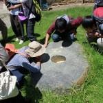 石臼を見る Observe a millstone