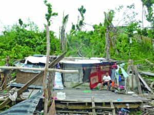 台風ヨランダにより約110 万棟の家屋が被害を受け、約410 万人が避難民となった。